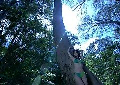Kurashina Kana - die Wälder