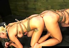 Fetisch Bibi Miami und Callie Calypso cumwhore Sklaven